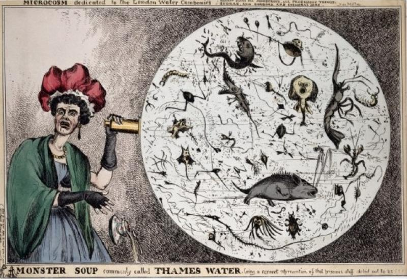 'Monster Soup, commonly called Thames Water' imagines what pestilent creatures may be found in the Thames