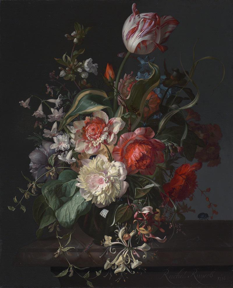 Dutch Flowers National Gallery Visual Arts Reviews News Amp Interviews The Arts Desk