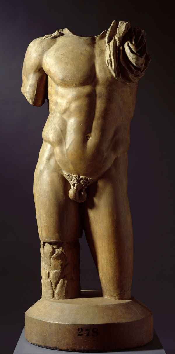 Male torso, 19th century. Plaster cast, Photo Royal Academy of Arts, London