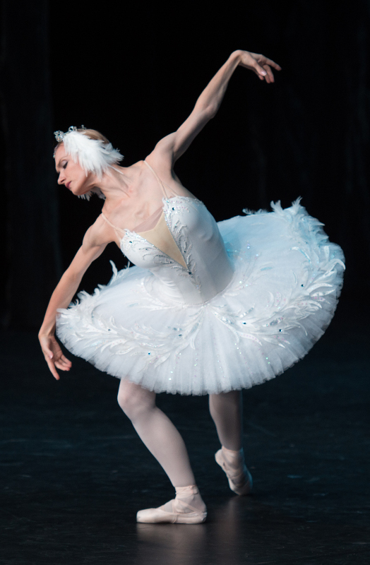 Irina Kolesnikova as Odette in Swan Lake. Photo by Bill Knight for theartsdesk