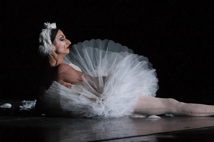 trocks dying swan ghiselin