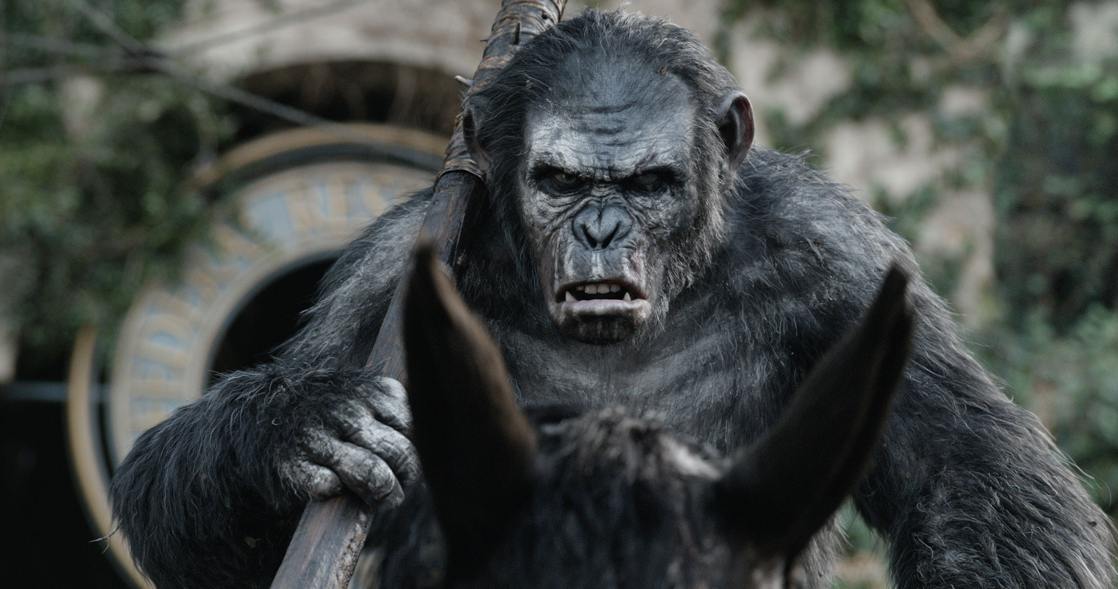 dawn of the planet of the apes toby kebbel