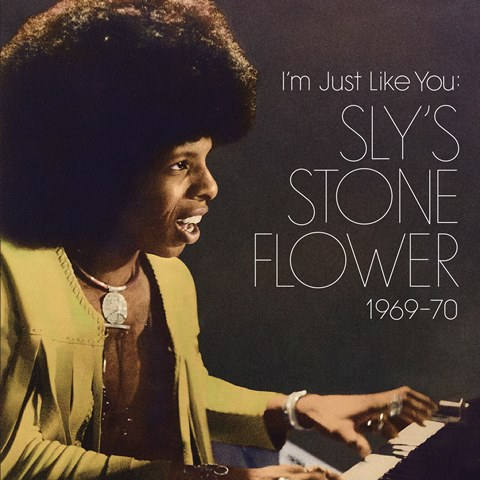 I'm Just Like You Sly's Stone Flower 1969–70