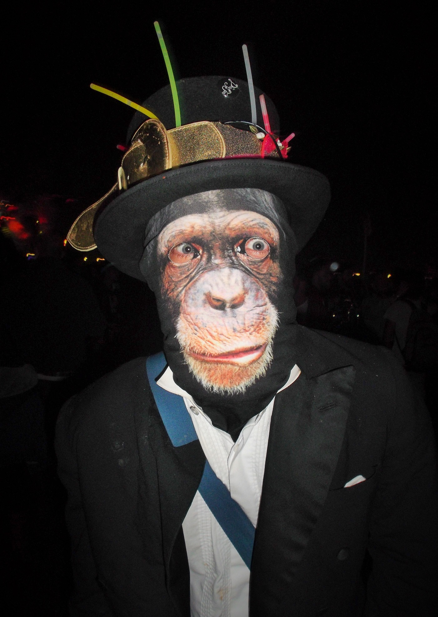 glasto chimp
